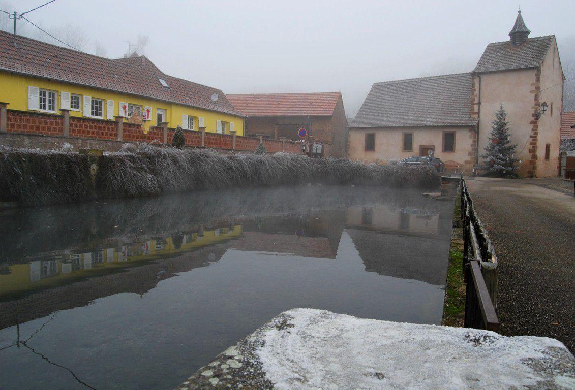 Malgré les 11°C en dessous de zéro, le lac sulfureux de Kuttolsheim ne gèle jamais ! Une petite curiosité locale. Les Romains y avaient installé des thermes en leur époque ...