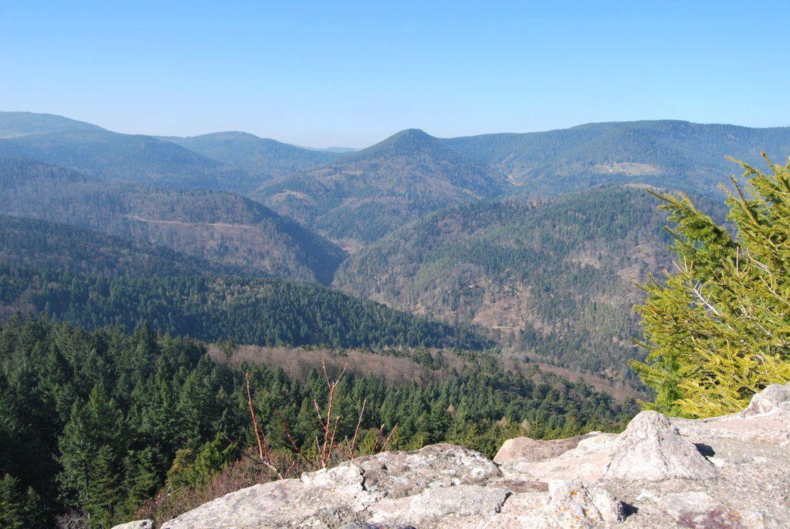 La vue est magnifique du haut du Schlossberg