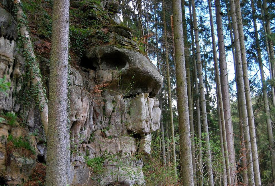 Dans les labyrinthes du Müllerthal