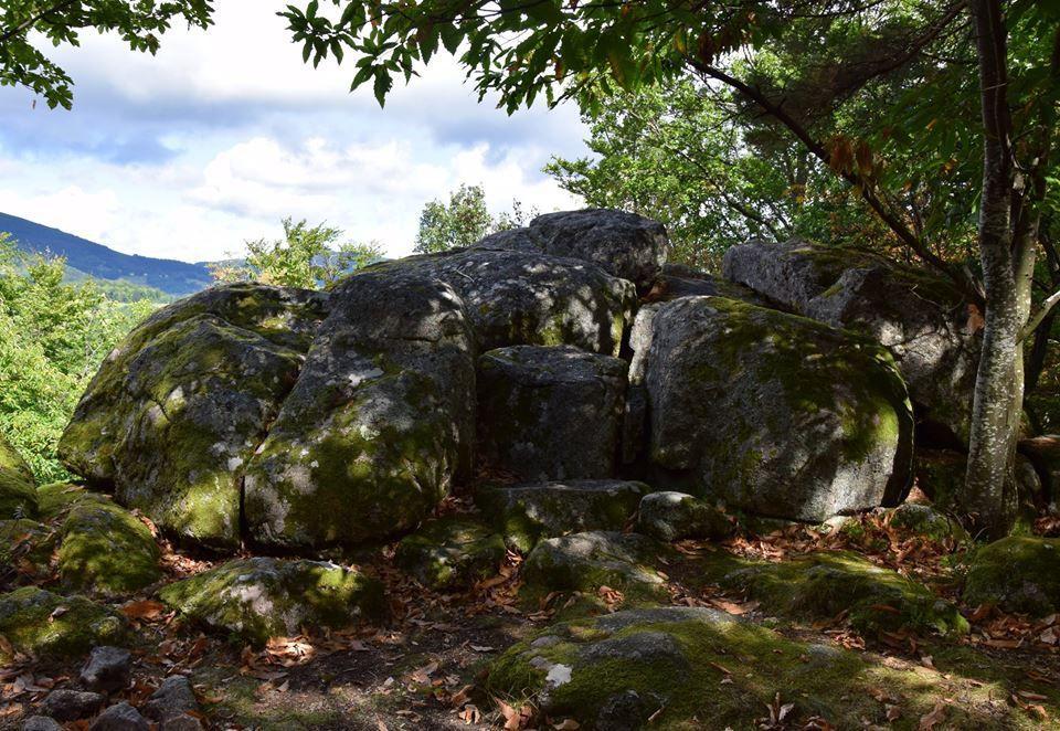 Cet amas de granit forme les Pierres du Loup, où l'un des derniers loups des Vosges a été tué