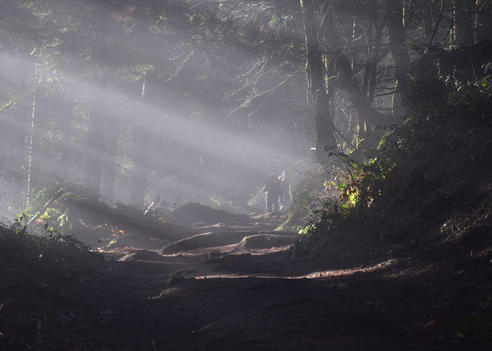 Des pèlerins sur le sentier, éclairés par la lumière divine ...