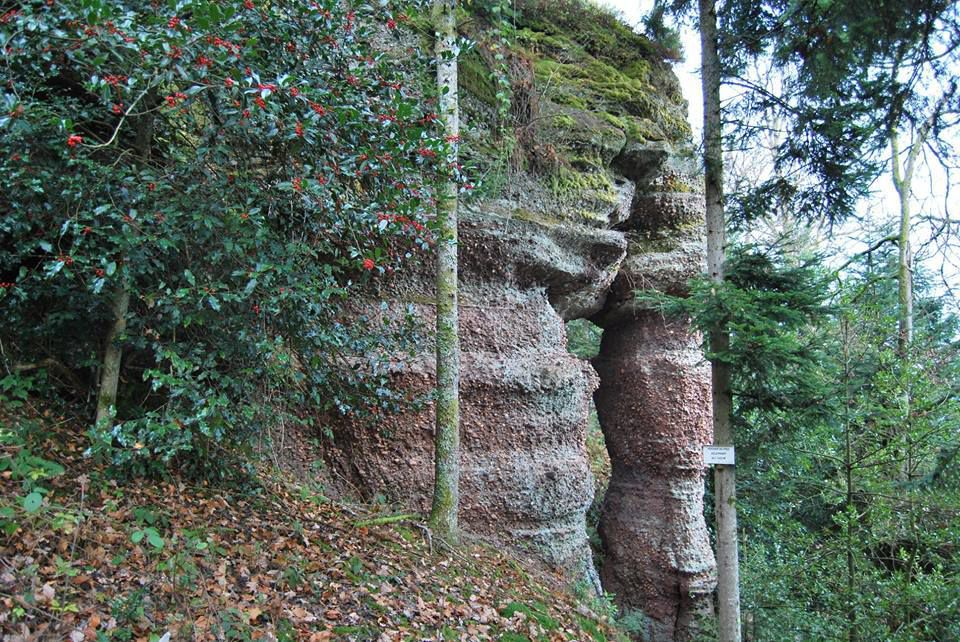 le rocher du Pied de l'Eléphant