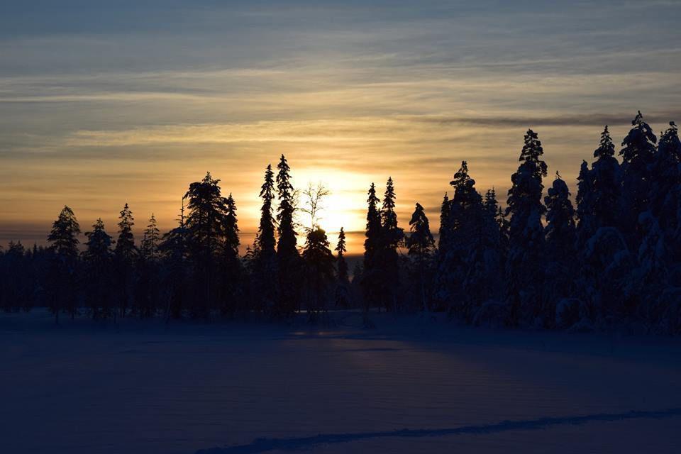 Le jour se lève en Laponie