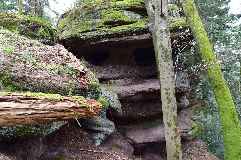 D'autres rochers dans l'immense forêt de Walscheid