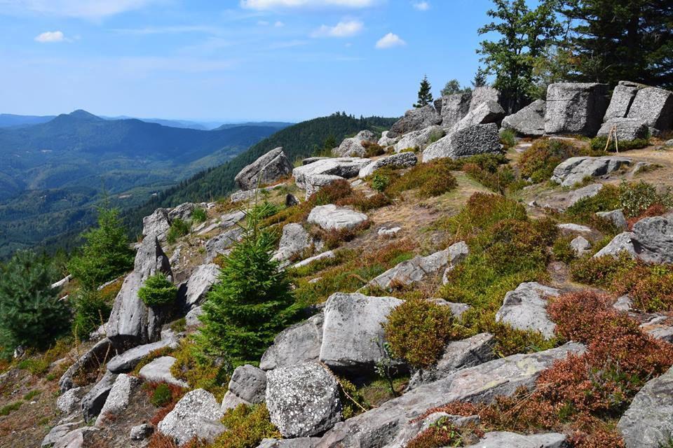 Au rocher de Mutzig