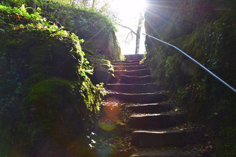 Un escalier du château dans la mi-ombre