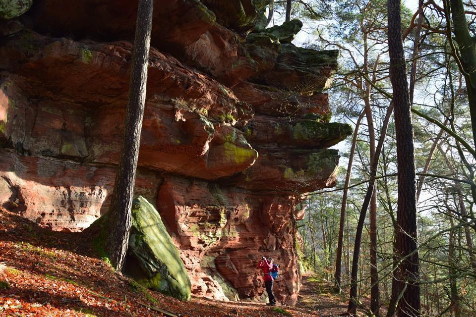 Le Krappenfelsen est un rocher d'escalade