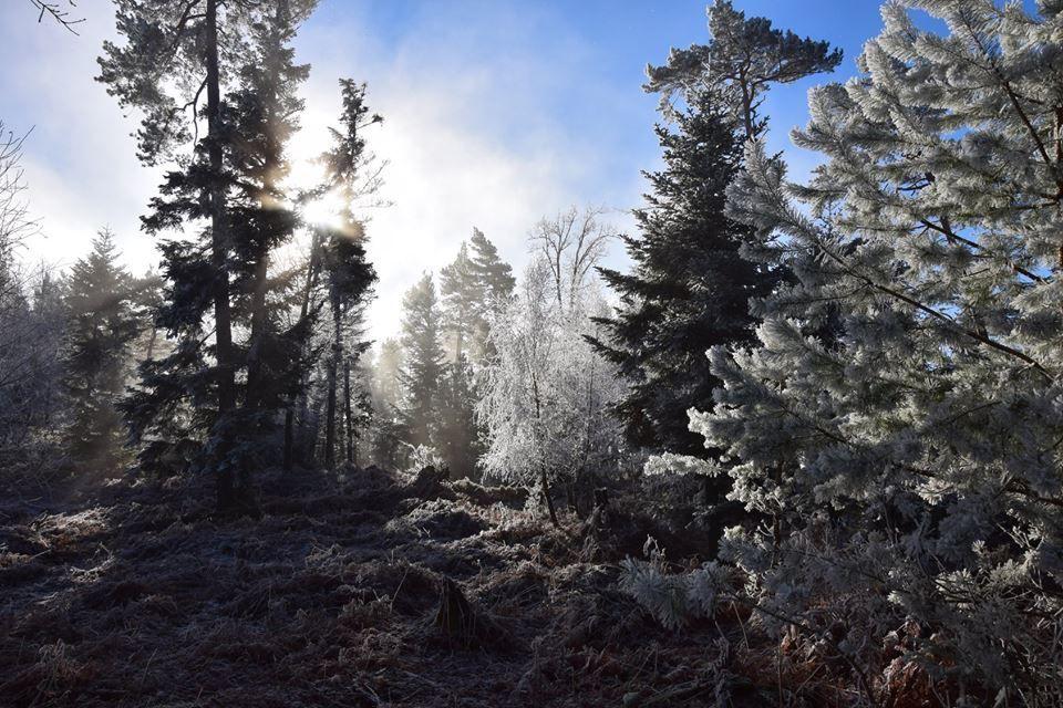 La brume se dissipe doucement
