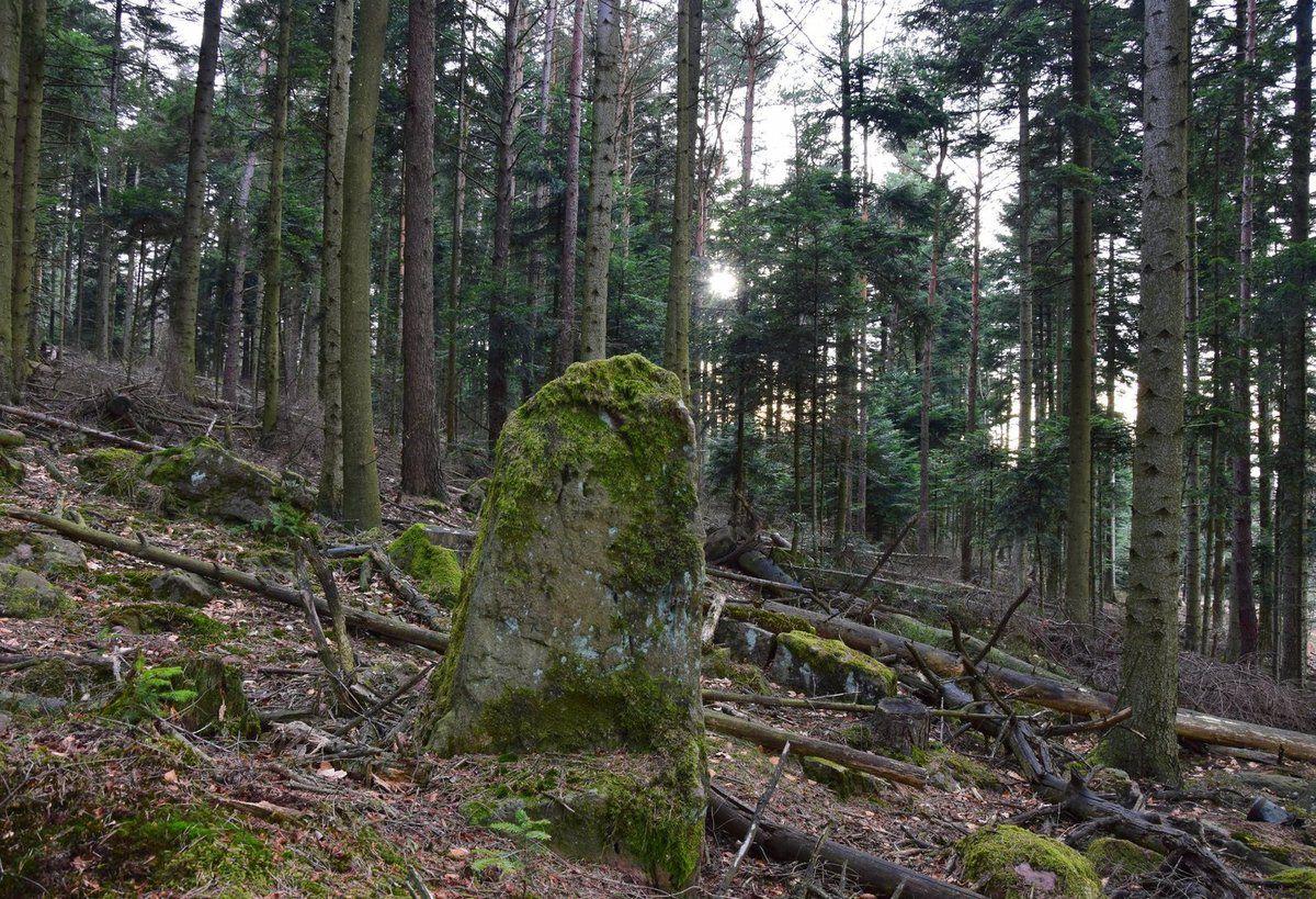 Une autre pierre levée au Wolfsberg