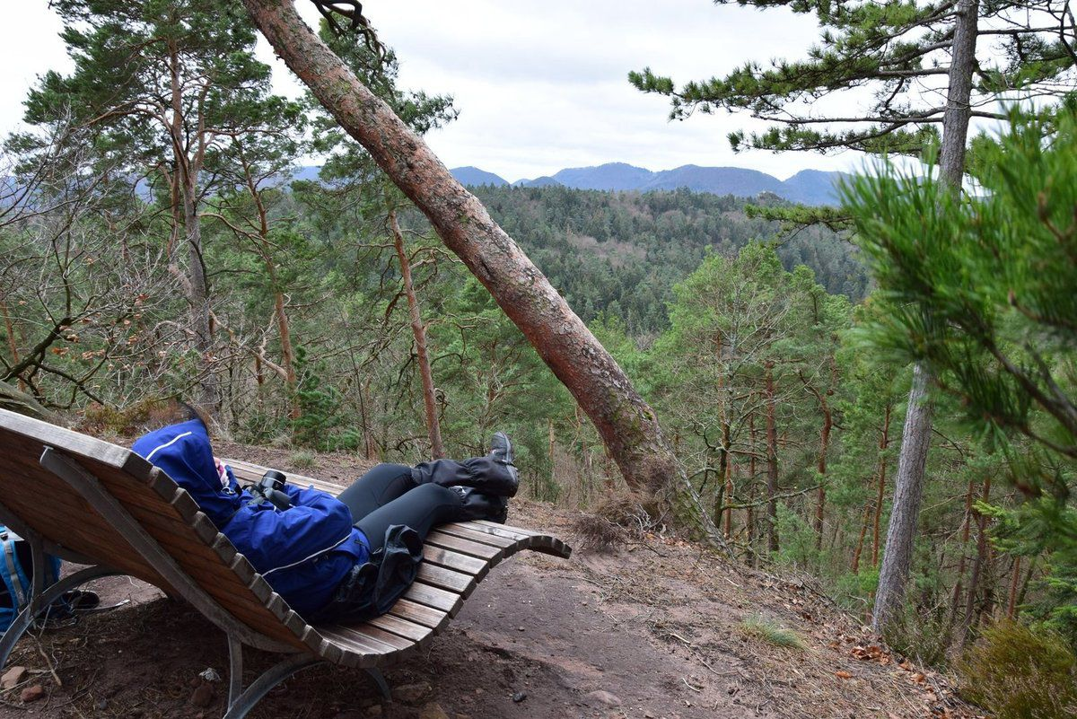 Un banc où il est plus agréable de se prélasser en admirant le paysage quand il fait beau !