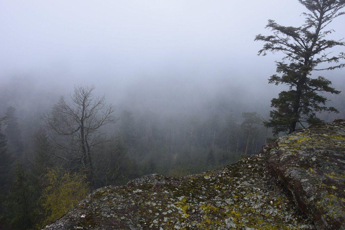 Lentement, la brume se dissipe