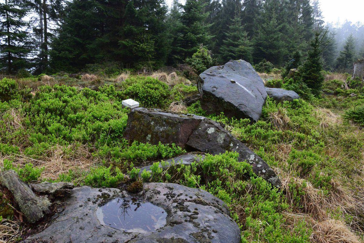 Tout le long du chemin, il y a des rochers creusés de bassins