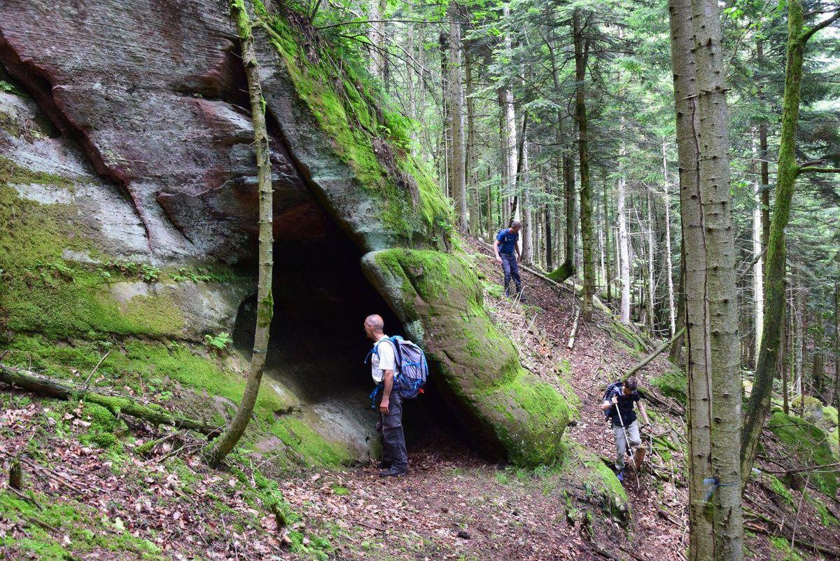 Ce rocher se trouve enfoui dans la forêt. Dans la faille il y a une petite surprise !