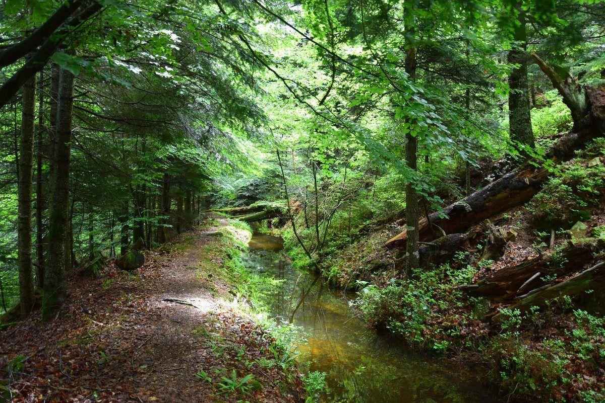 Le canal fait environ deux kilomètres de long