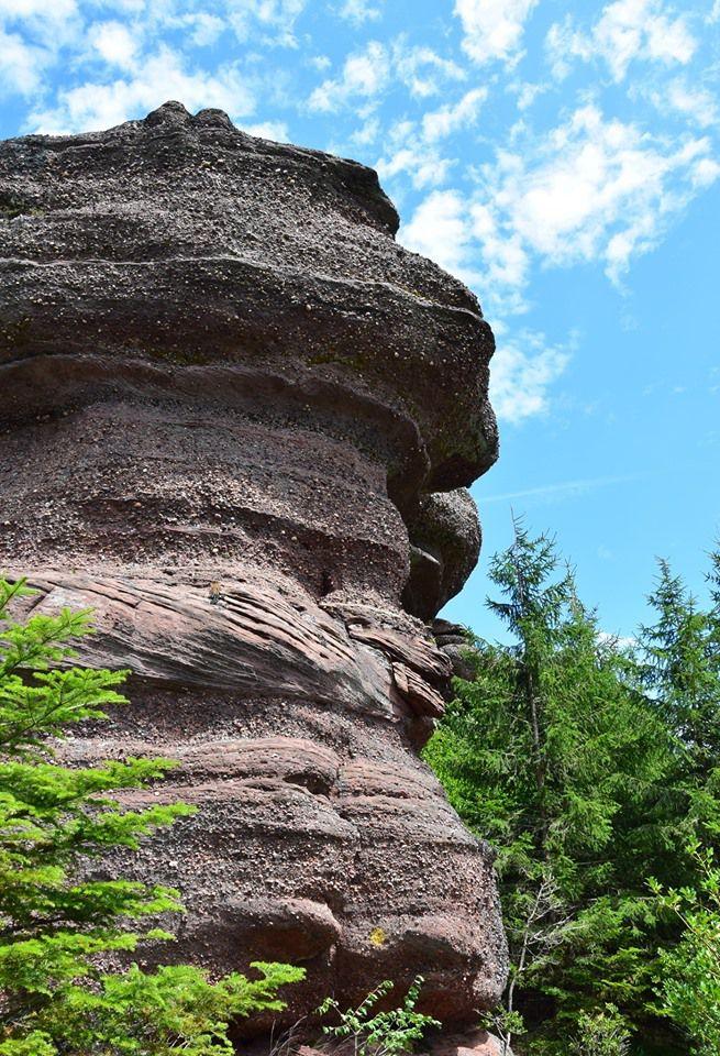 Le rocher à tête de chat au Rougimont