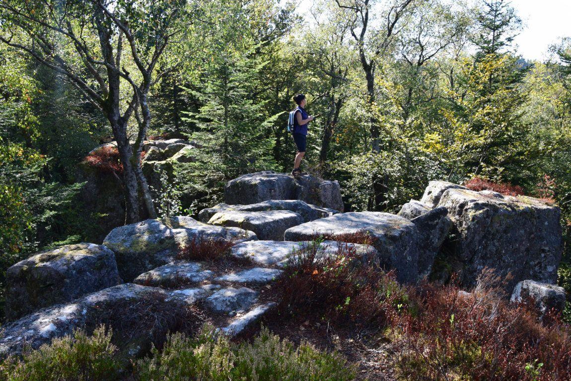 Bain énergétique dans la forêt du Fossard