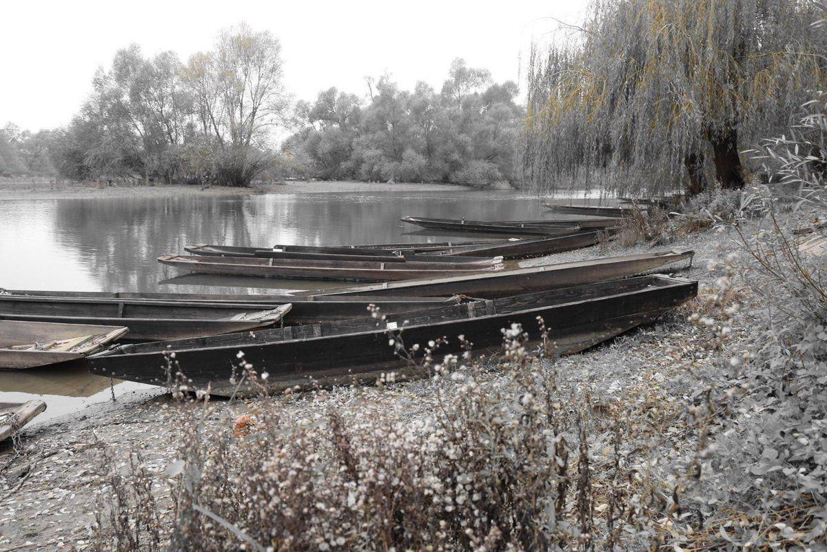La barque à fond plat est l'un des symboles du paysage rhénan
