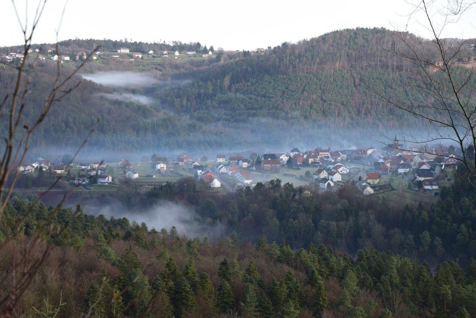 Schaeferhof sous la brume