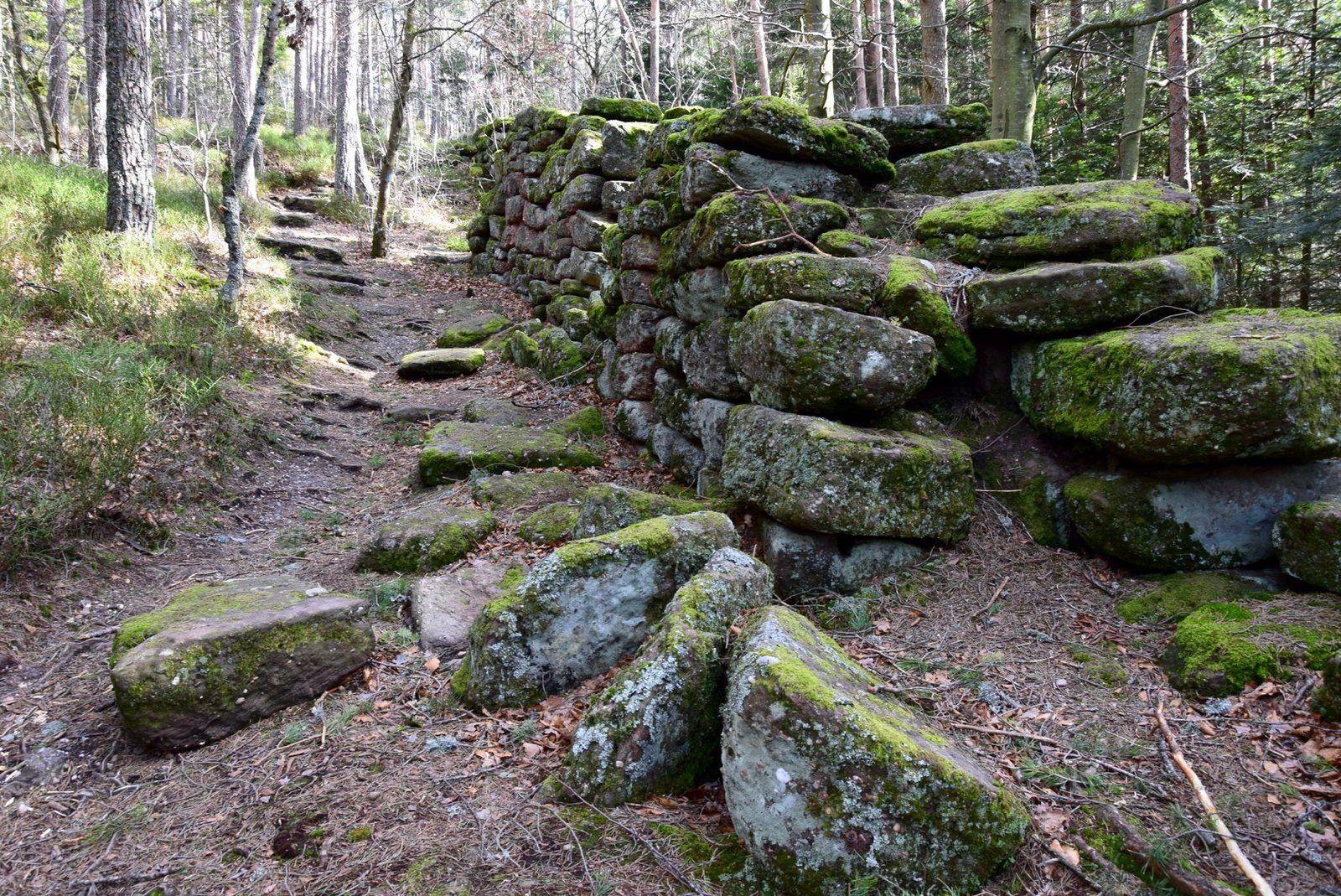 Le Mur Païen du Mont Sainte Odile