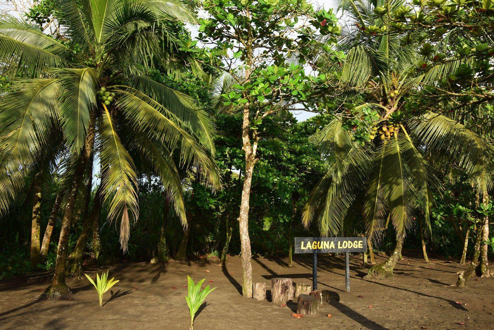 Les plages du Laguna Lodge, Caribbean beach