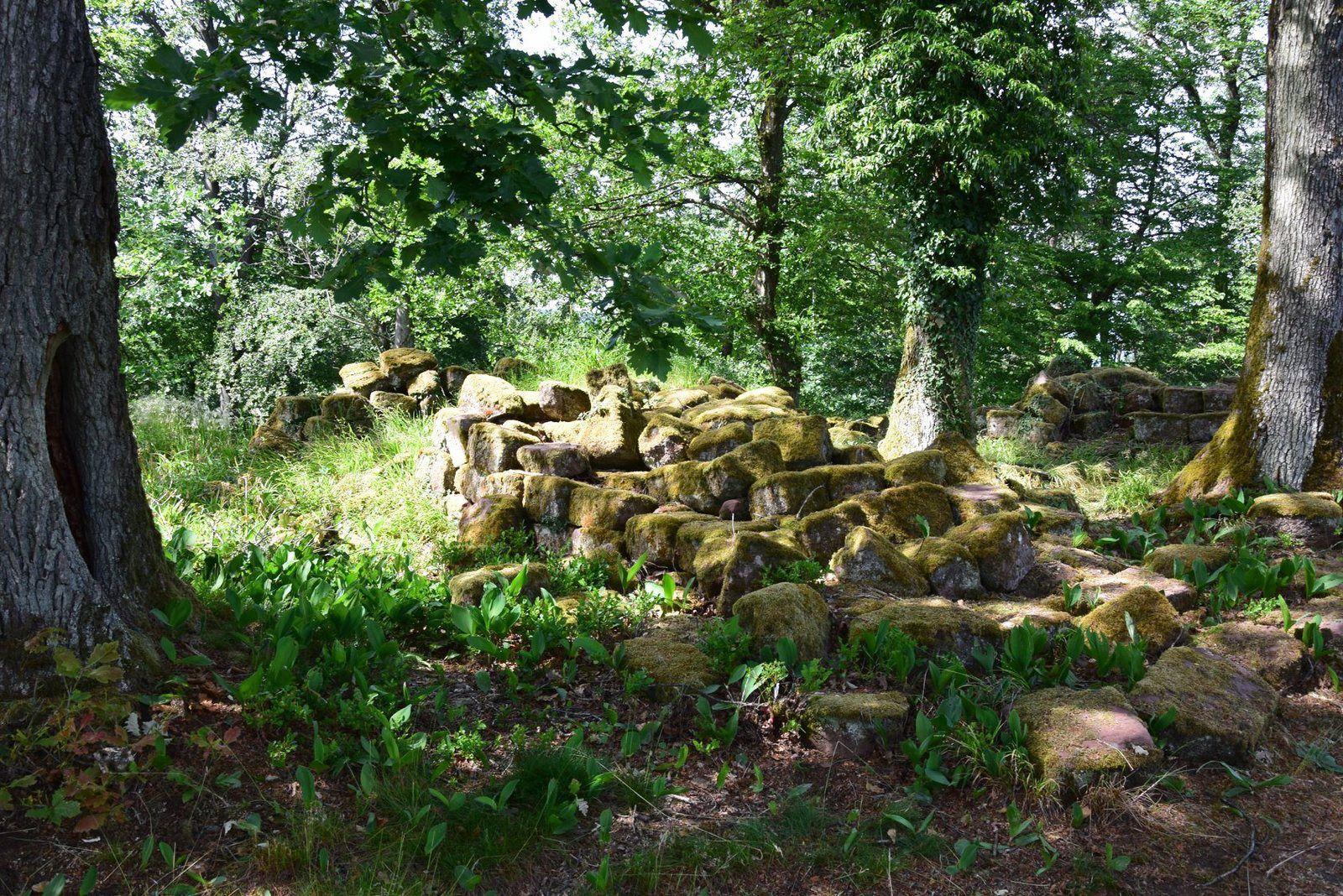 Les vieilles pierres de château du Warthenberg