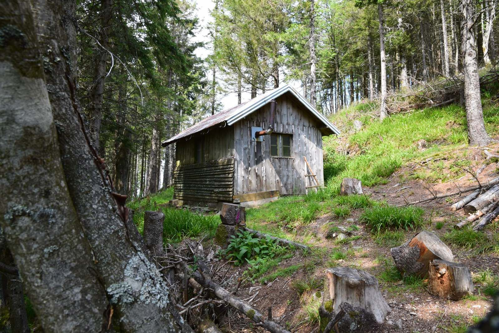 L'abri du Hirzberg