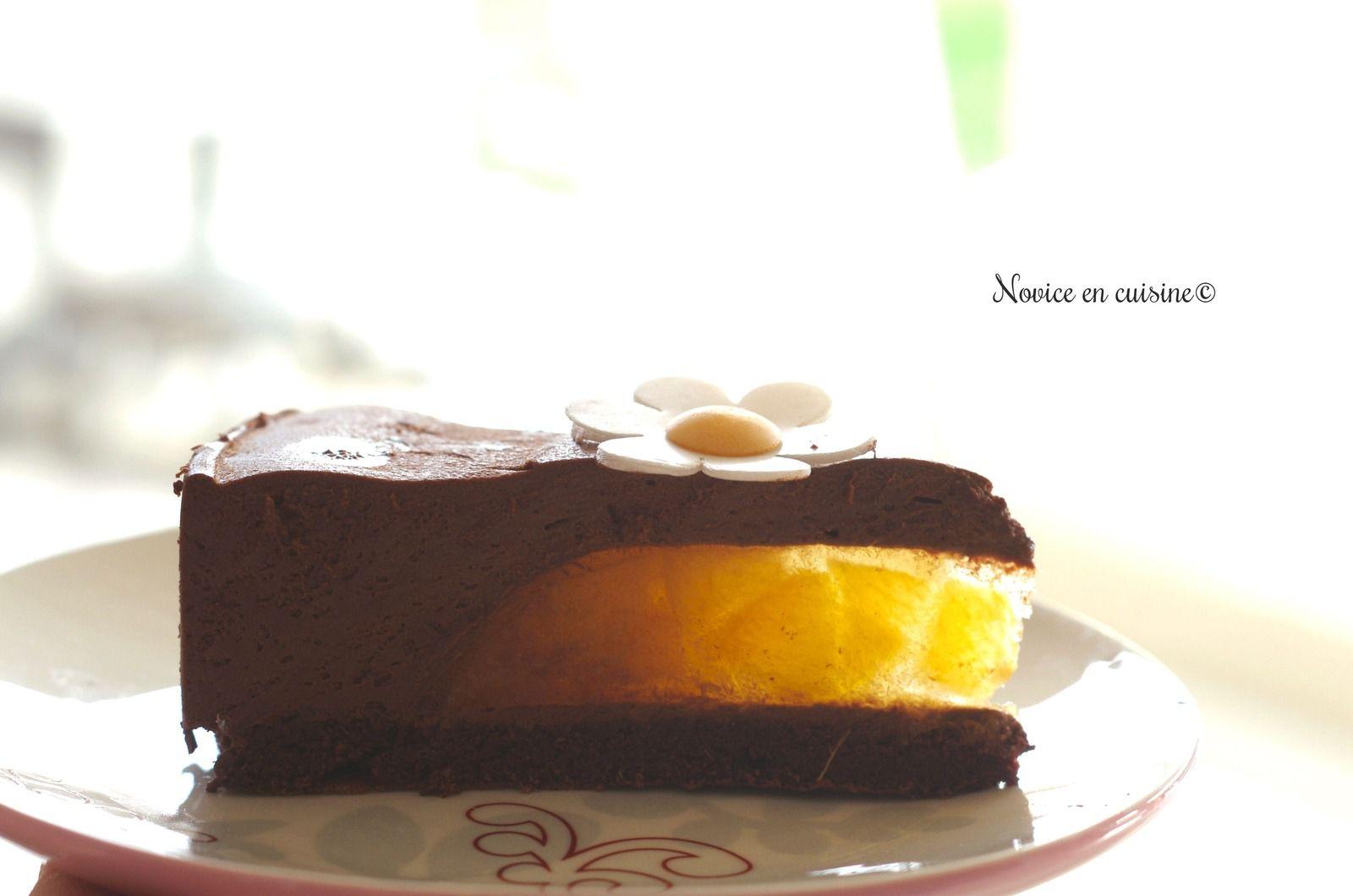 Entremet chocolat coeur abricots
