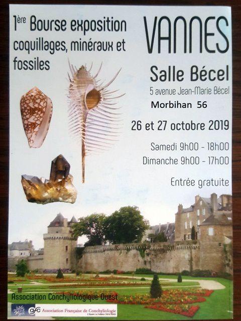 AFC-Ouest-Expo-bourse-coquillages-Vannes-octobre-2019