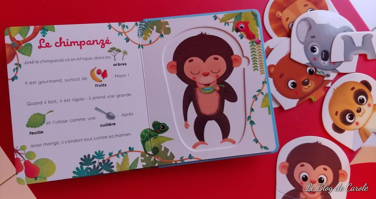 Puzzles méli-mélo des animaux - Editions Lito