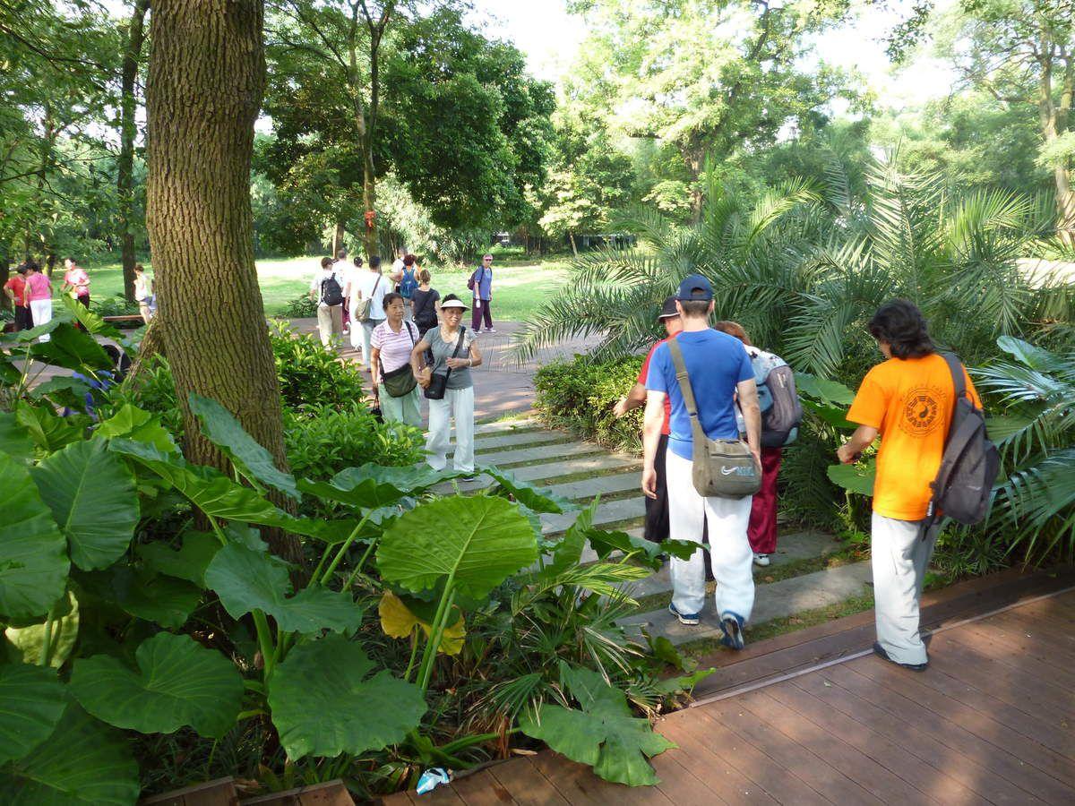 Joyeusetés de l'été, Taiji Quan au Jardin