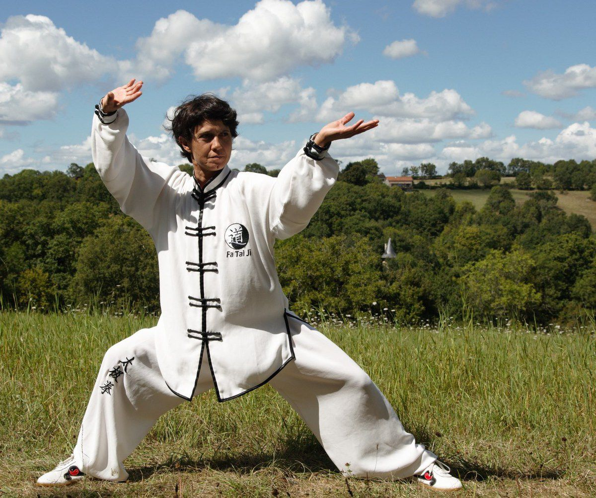 Stages Taiji Quan et Taiji Shan Style Chen