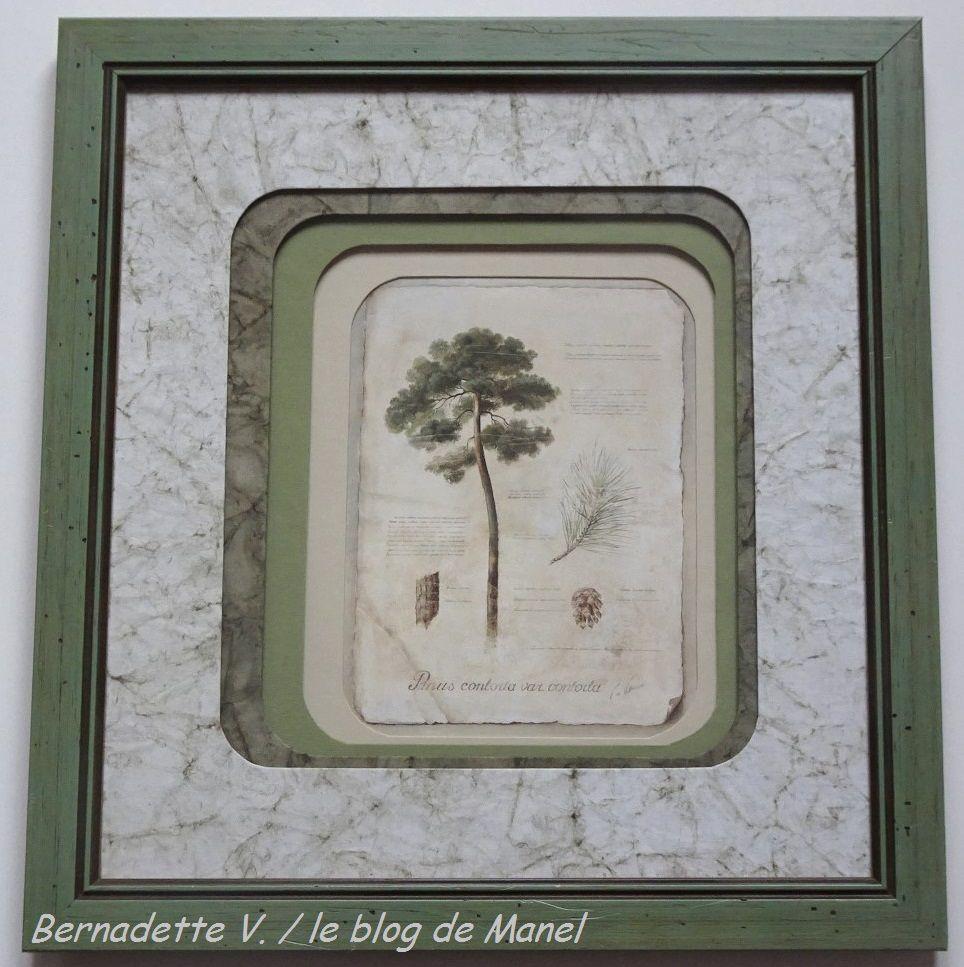 BERNADETTE V. /ELEVE DE MANEL / PASSES AUX COINS ARRONDIS