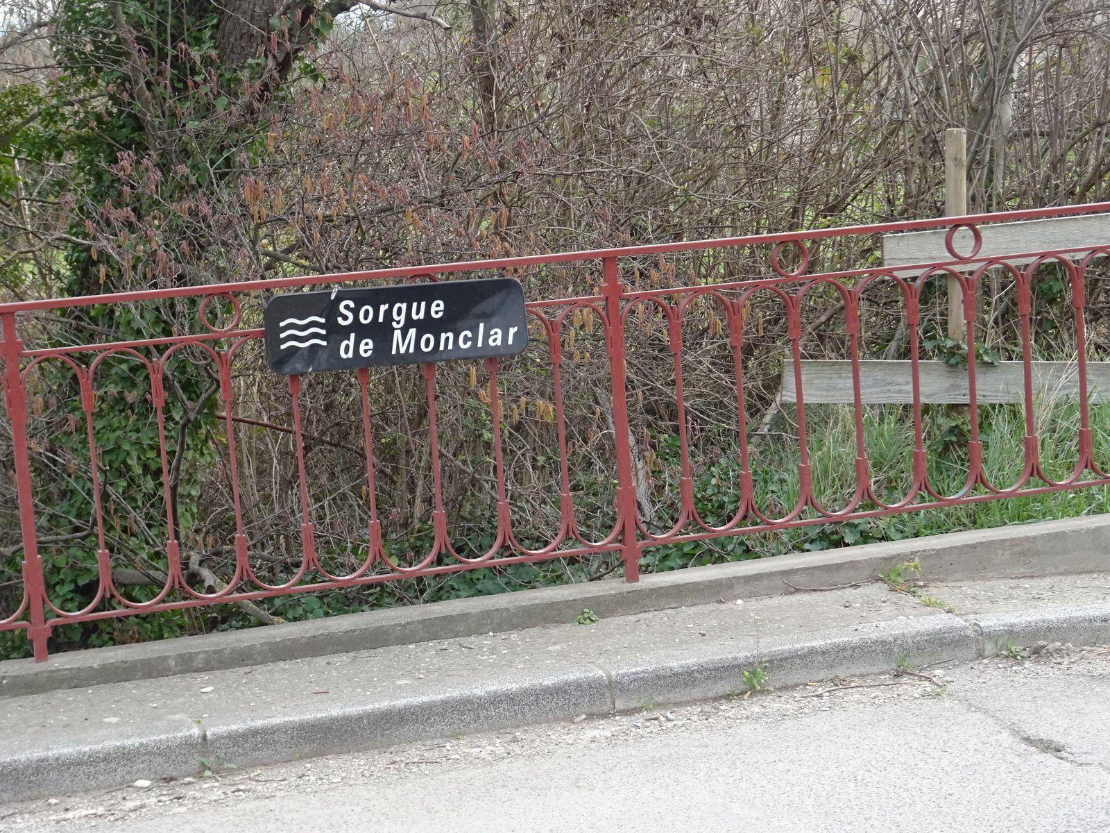 2020-02-10 Autour de l'île sur la Sorgue (Mise à jour-photos en plus )