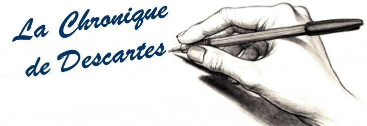 GILETS jaunes, idées noires… - sur le blog de Descartes -