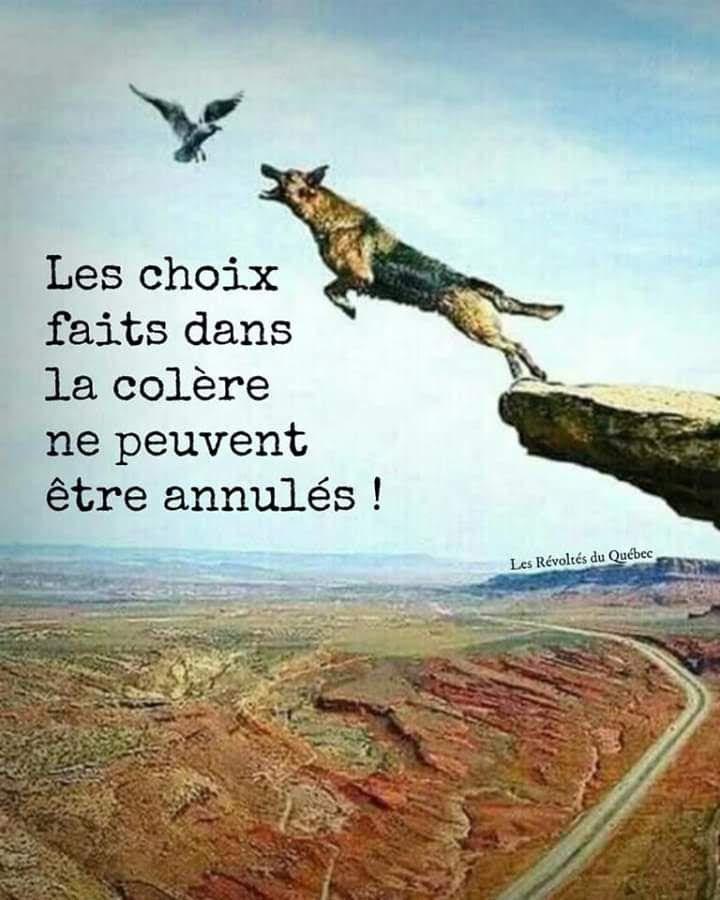 LES CHOIX FAITS DANS LA COLERE....