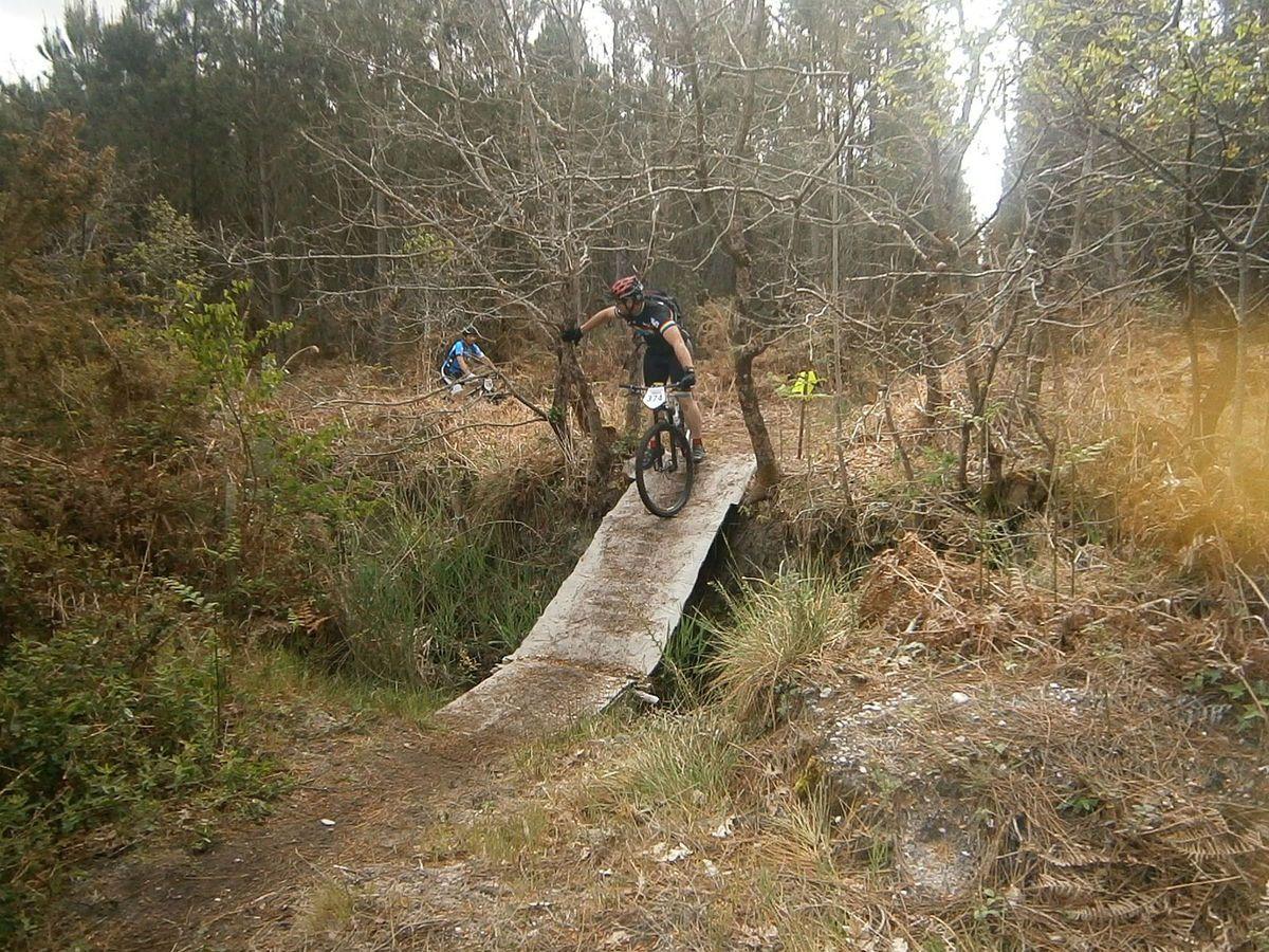 Un pont tapissé , un peu hard à descendre !!!