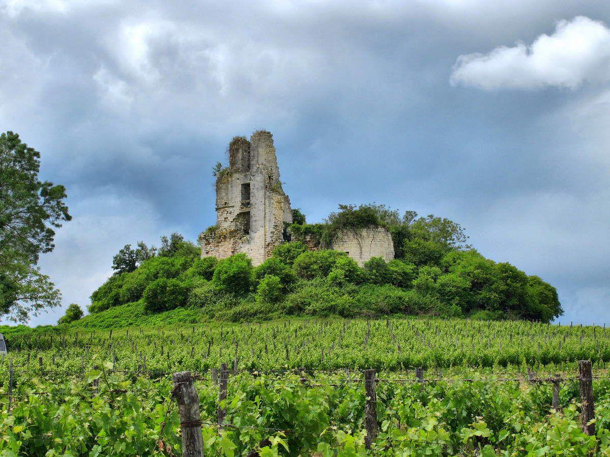 Le château de Carsac de Gurson au loin
