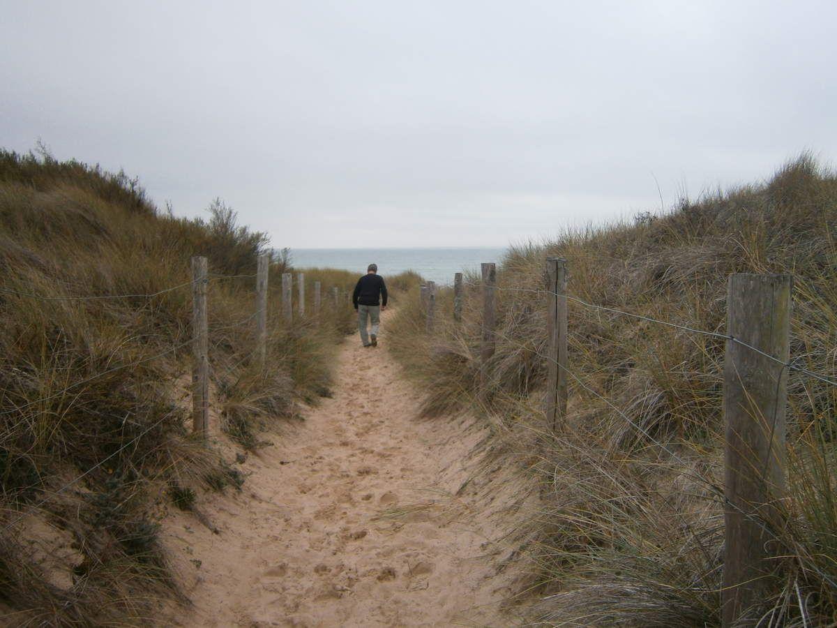 Des kilomètres et Kilomètres de sentiers jouxtent la plage