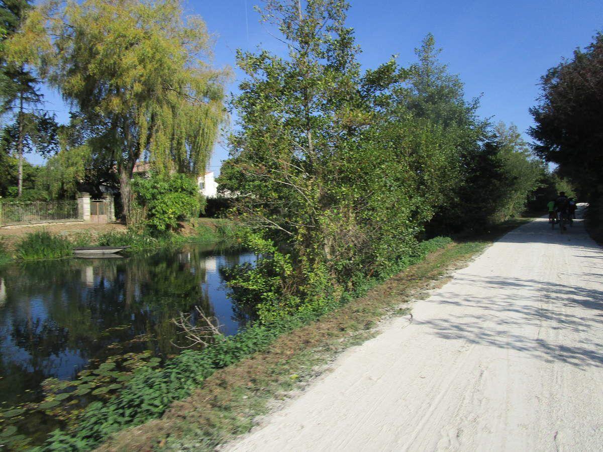 Une virée dans le marais Poitevin