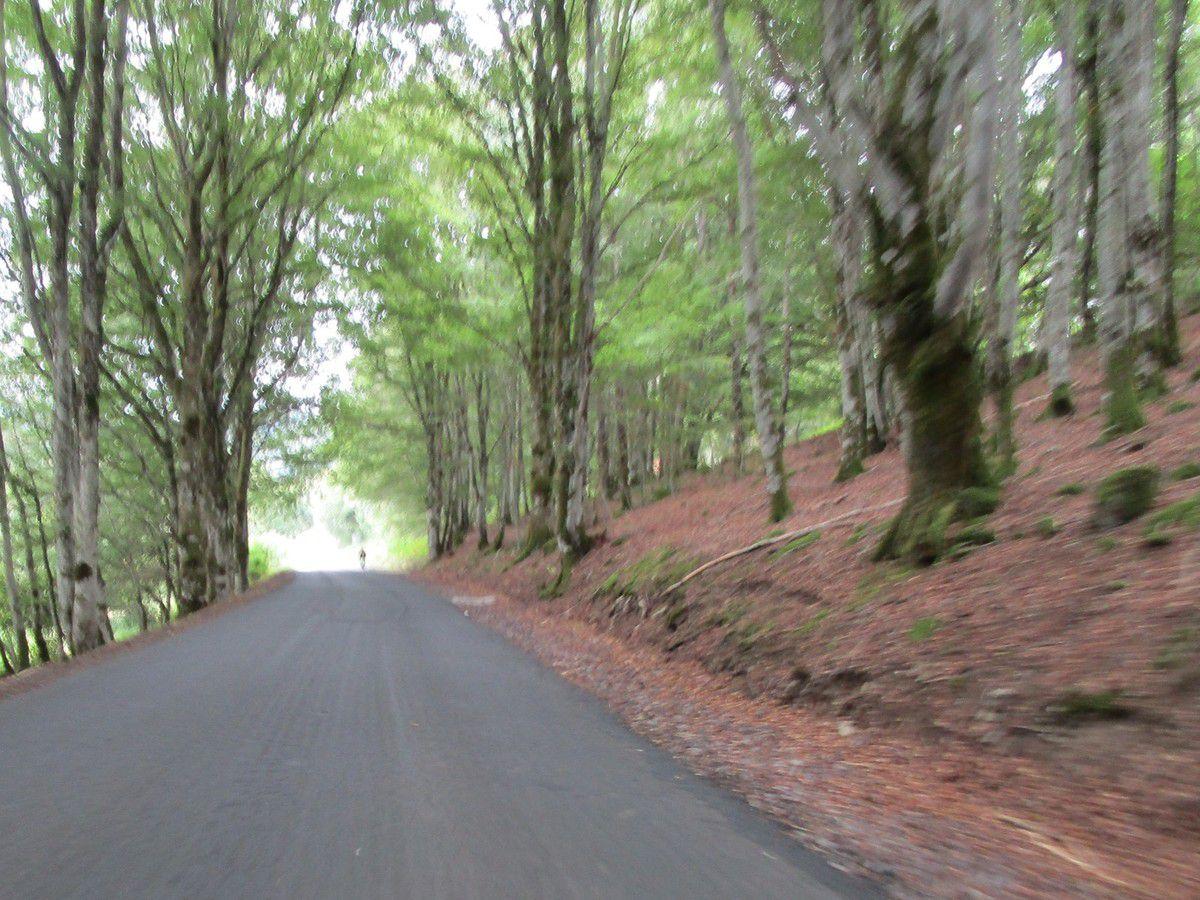 Un petit tour en Auvergne