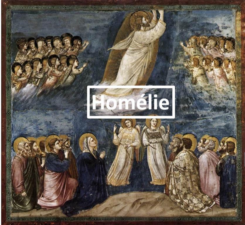 Homélie du Père Bastien Romera pour la Solennité de l'Ascension