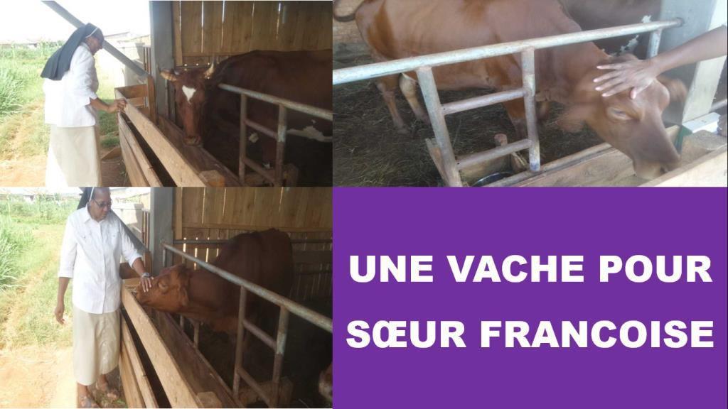 UNE VACHE POUR SOEUR FRANCOISE !