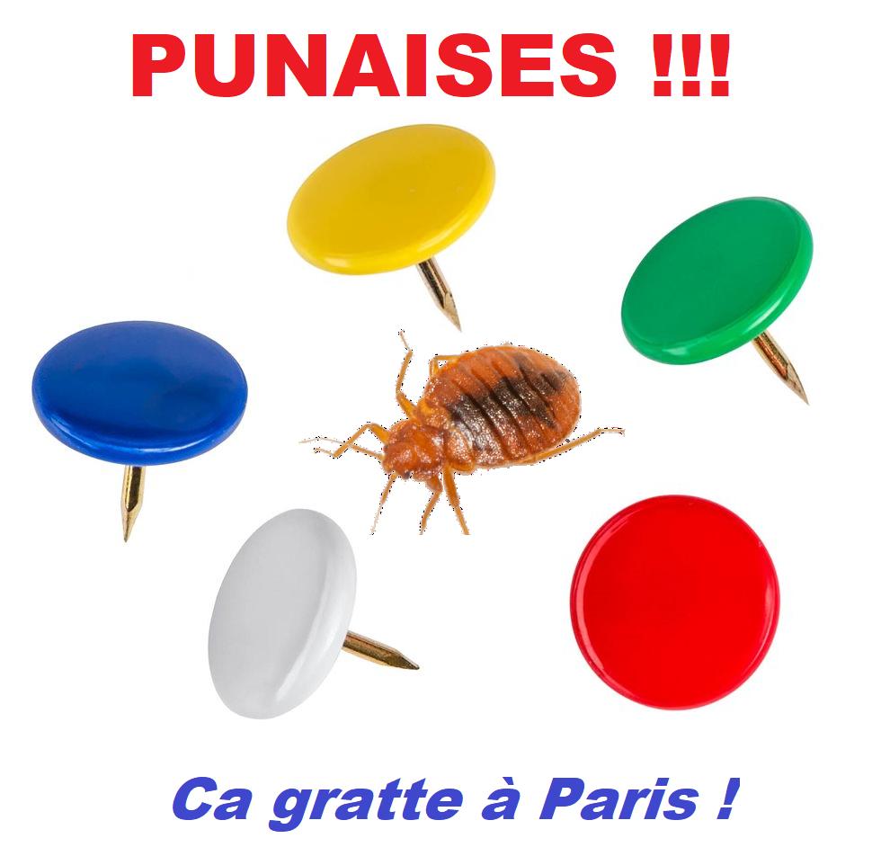 A Paris: le Service Public régresse, les Punaises de lit progressent !