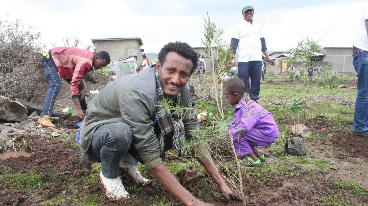 Ethiopie-plante-350-millions-d-arbres