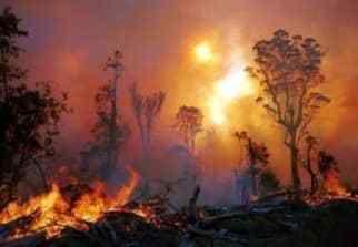 feux-de-forêts-indonésie