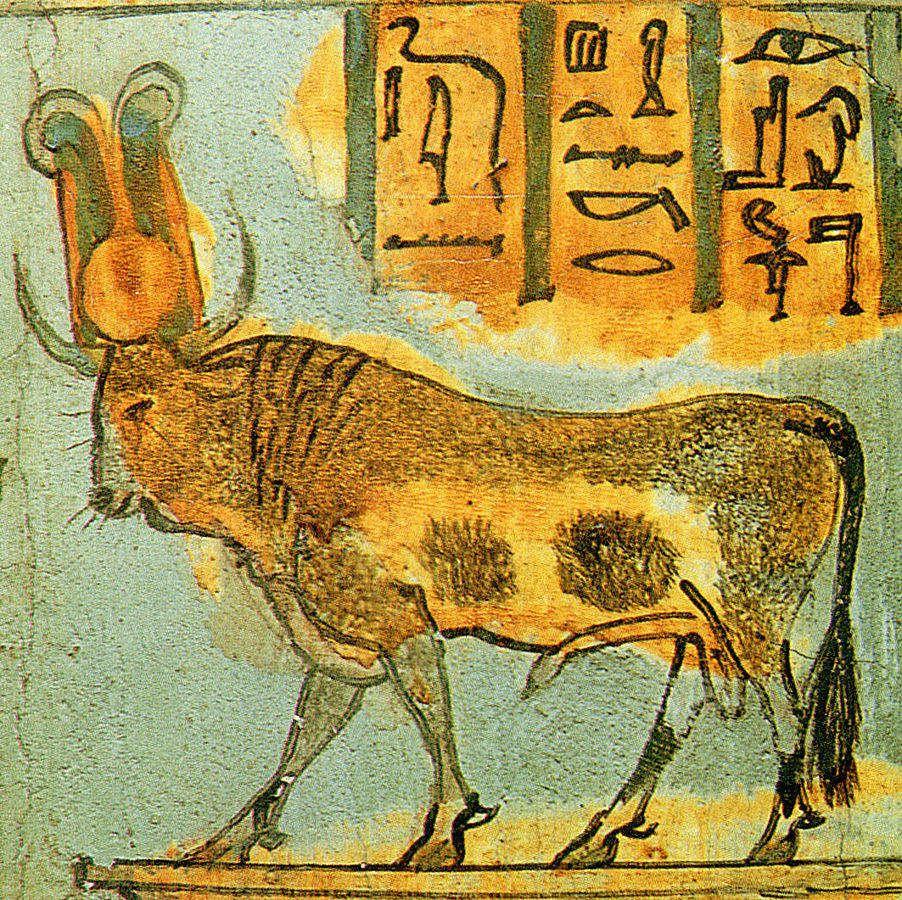 Результат пошуку зображень за запитом bull in ancient egypt