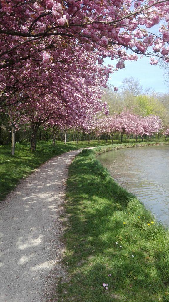 Le Canal de l'Ourcq à Claye-Souilly