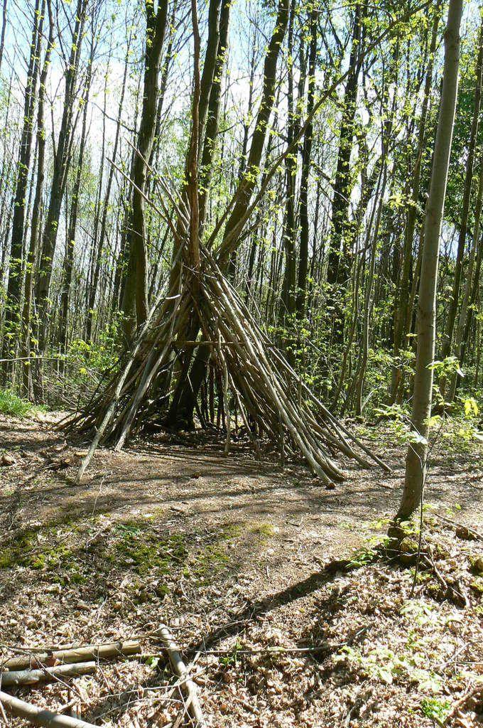 29.4.2019 Forêt Régionale de Montgé une cabane