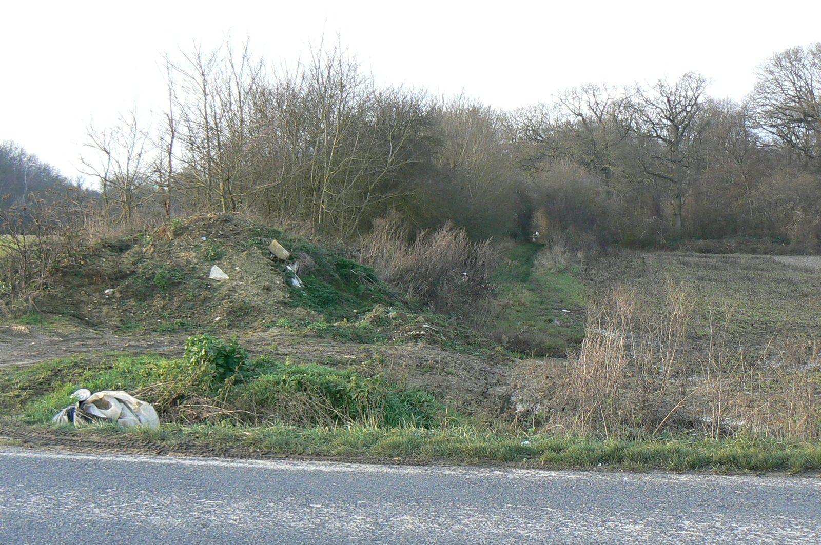 chemin de Gros Bois aux vignes de Claye , au bord de la RD34,