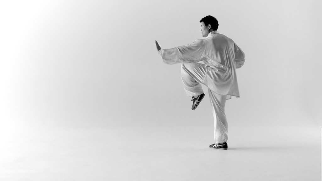 Wang Haijun honore la Journée Mondiale du Tai Chi